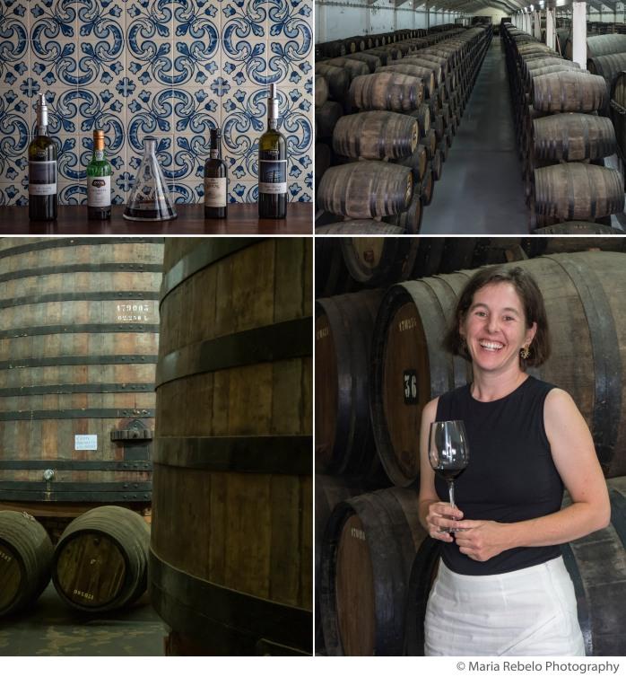 C0mposite Poças Wines